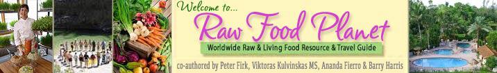 Raw Vegan Recipes - Page 6 Rawfoodplanet4authors2005